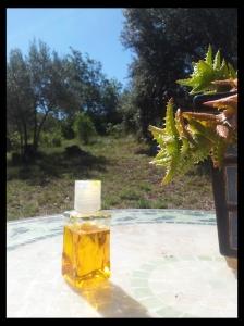 Une huile toute douce comme une après-midi au soleil :)